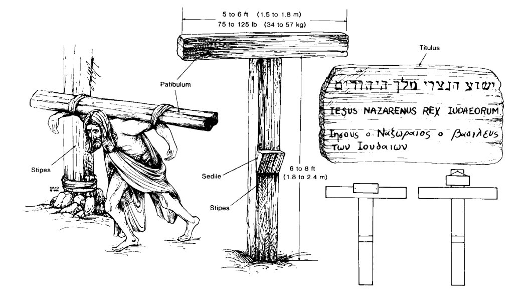 an analysis of jesuss crucifixion and death In their accounts of our lord's crucifixion and death, matthew, mark, and luke  it has fallen to their lot to carry out the crucifixion of jesus and the two robbers.
